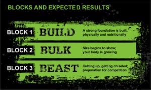body-Beast-blocks